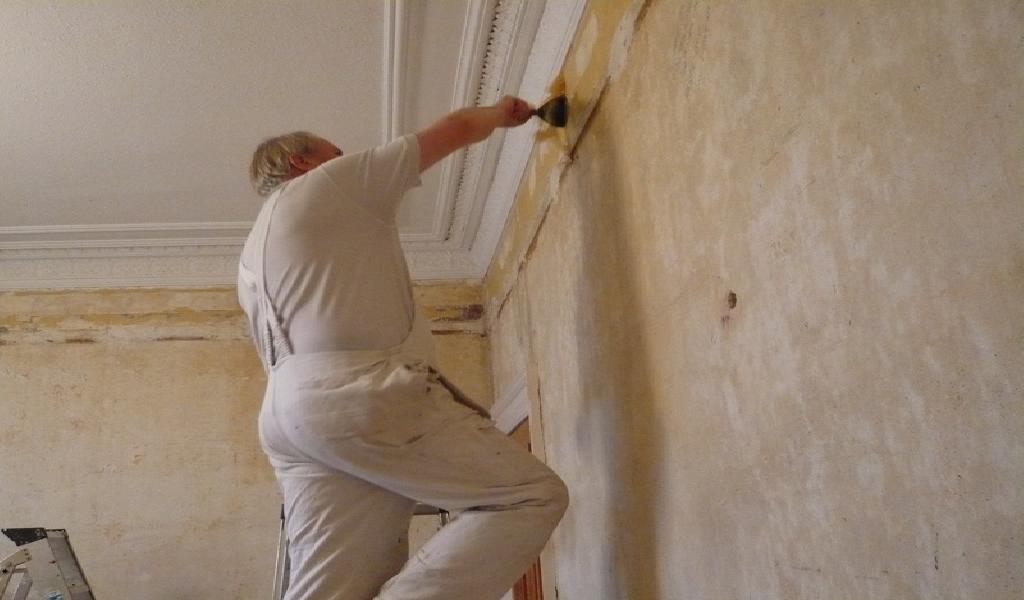 Debería contratar a un profesional para pintar mi casa